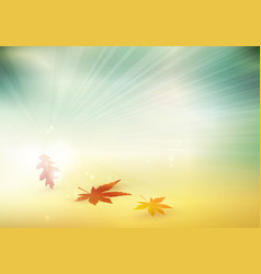 abstract autumn fall leaves blurry background vector image vector image