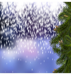 Festive Christmas background with branches of fir vector image vector image