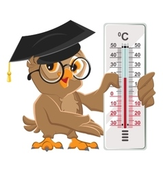 Owl teacher holding thermometer Indoor vector image