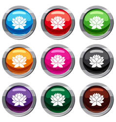 Lotus flower set 9 collection vector