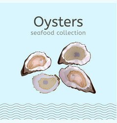 seafood collection image vector image vector image