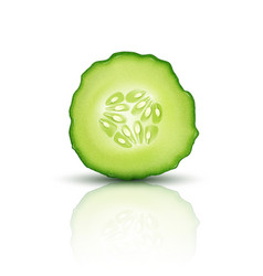 Slice juicy cucumber isolated on white background vector