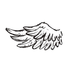 Wing feather animal bird angel icon vector