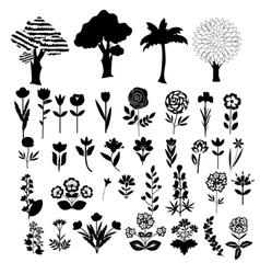 Trees and flowers vector