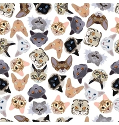 Flat seamless pattern pedigree cats vector