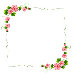 A border with carnation pink flowers vector image