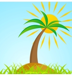 Tropical palm tree on island with shiny sun vector