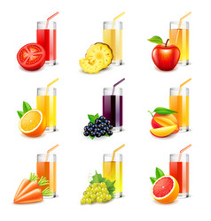 Fruit juice icons set vector