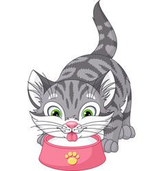 Kitten drinks milk vector