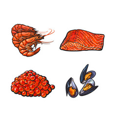 sketch seafood set isolated vector image vector image
