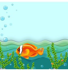 An orange fish under the sea vector