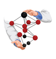 doctors hand with molecule structure vector image
