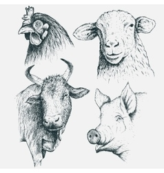 Set of farm animals vector