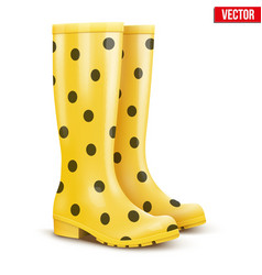 Pair of yellow rain boots vector
