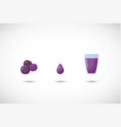 acai berries juice flat icon set vector image vector image