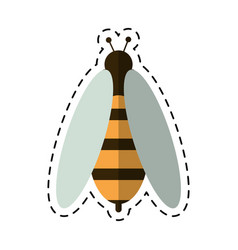 Cartoon bee honey insect insect icon vector