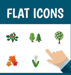 Flat icon nature set of canadian floral forest vector
