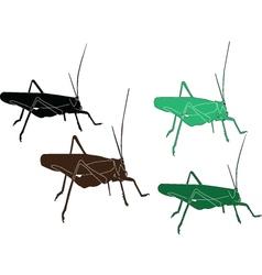 grasshopper - vector image