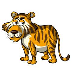 wild tiger with sleepy eyes vector image