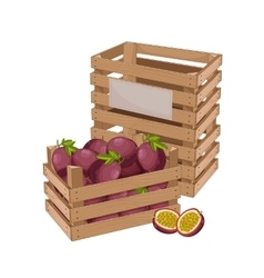 Wooden box full of passion fruit isolated vector image