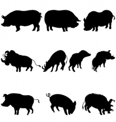Pigs and boars silhouettes set vector