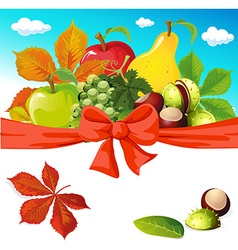 Autumn still life with fruit vegetables and vector image vector image