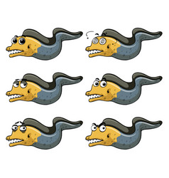 Eel with different emotions vector