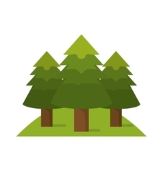 Isolated pine trees design vector