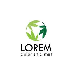 round marijuana logo vector image