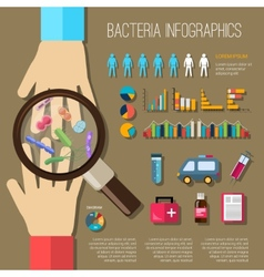 Bacteria infographics set vector