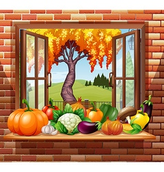 Fresh fruits and vegetables in the room vector image vector image