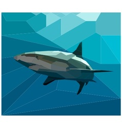 polygon shark vector image vector image