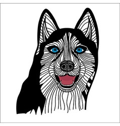Dog husky head animal vector