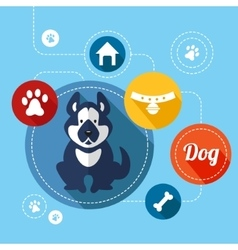 Dog info graphics vector
