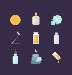 Aromatherapy icons set vector