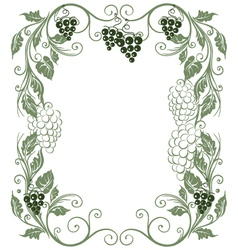 Grape vines vector