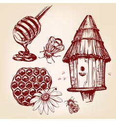 honey elements set hand drawn llustration vector image