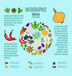 spices infographic design with cartoon icons vector image vector image