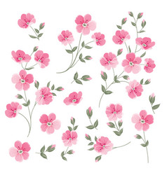 set of linen flowers elements vector image