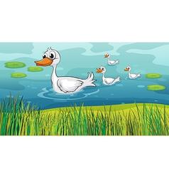 Little ducks following the mother duck vector image