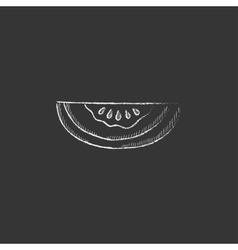 Melon drawn in chalk icon vector