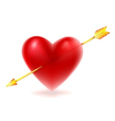 Red heart shape vector