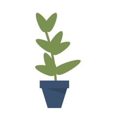 plant in pot icon vector image