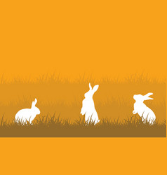 White rabbit on hill landscape vector