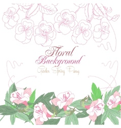 White floral background with pink pansies vector