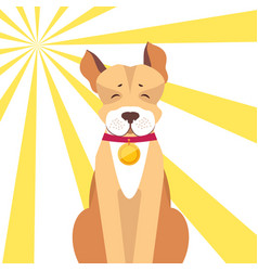 basenji dog with closed eyes on sunny background vector image vector image