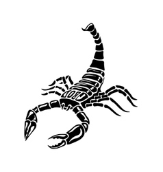 Black and white Scorpion for tattoos zodiac sign vector image