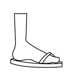 cartoon feet sandal vacation style outline vector image vector image