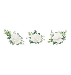 Floral bouquet set of garden white powder peony vector