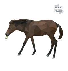 Horse polygon vector